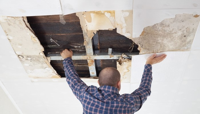 Building Defects in Residential Multi-owned Properties