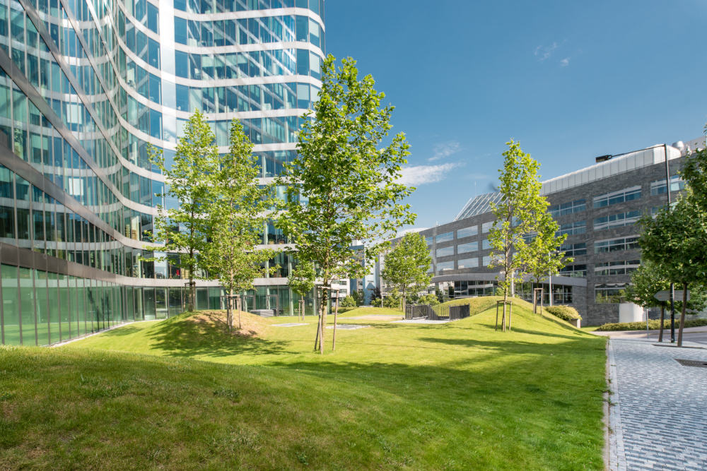 Top 5 Green Buildings using OmTrak